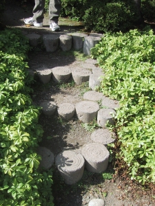 Stepping Stones in the Japanese Garden