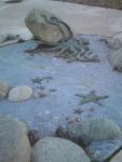 Comorant Cove bronze sealife